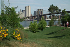 Brooklyn Bridge Park Pier One New York USA Stock Images