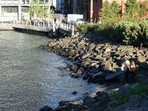 Brooklyn Bridge Park 213 Royalty Free Stock Photos