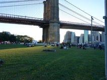 Brooklyn Bridge Park 263 Stock Photos