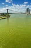Brooklyn Bridge. Brooklyn Bridge at sunny day Royalty Free Stock Images