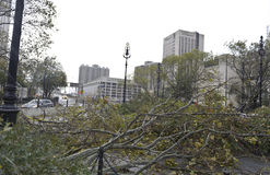 Brooklyn Bridge after super storm Sandy Royalty Free Stock Photography