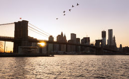 Brooklyn Bridge towards lower manhattan Stock Photography