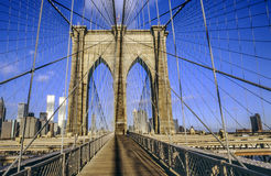 Brooklyn bridge with world trade Stock Image