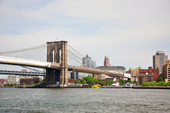 Brooklyn brodge Royalty Free Stock Image