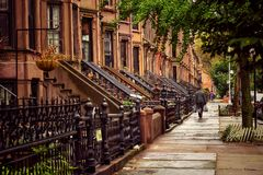 Brooklyn Brownstones. Brownstone houses in Flatbush, Brooklyn in NYC Stock Photography