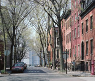 Brooklyn Heights New York USA. Tree lined street in Brooklyn Heights, New York. Across the East River, Manhattan is visible at the end of the street royalty free stock photos