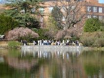 Brooklyn jardin botanique partie 9 en avril 2016 Photo libre de droits