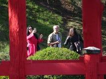 Brooklyn jardin botanique partie 16 en avril 2016 Photos stock