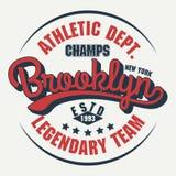 Brooklyn koszulki grafika royalty ilustracja