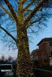BROOKLYN NEW YORK - DECEMBER 20, 2017 - ljus för Dyker höjdjul dekoreras för ferien      för Arkivfoto