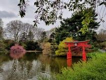 Brooklyn ogród botaniczny Zdjęcia Stock