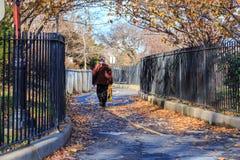 Brooklyn Park i nedgång Royaltyfri Foto