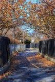 Brooklyn Park i nedgång Arkivbild
