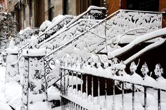 Brooklyn Snow Stock Photography