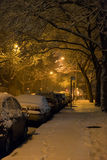 Brooklyn under snow Royalty Free Stock Images