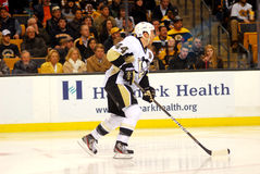 Brooks Orpik Pittsburgh Penguins Royalty Free Stock Image