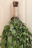Broom birch twigs for Russian sauna. Royalty Free Stock Photography