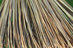 Broom Broomsticks closeup Royalty Free Stock Photo