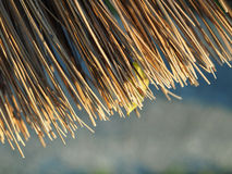 Broom Broomsticks closeup Stock Images