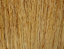 Broom close up. New broom close up Stock Photo