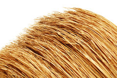 Broom Detail Stock Photo