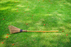 Broom in a garden Royalty Free Stock Images