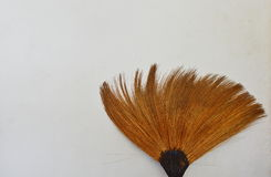 Broom grass lean on old white wall Royalty Free Stock Photography