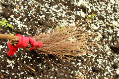 Broom made of branches. On the ground Royalty Free Stock Photography