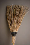 Broom texture background Royalty Free Stock Photo