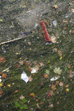 Broom thrown on a polluted river full of dirt, seaweed, rests of Royalty Free Stock Photography
