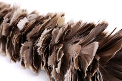 Broom to sweep dust feather isolated Royalty Free Stock Images