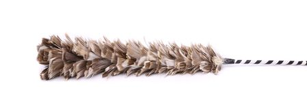 Broom to sweep dust feather. On white background Stock Photos