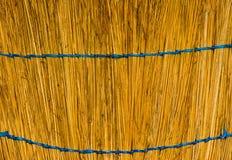 Broom. Royalty Free Stock Photo