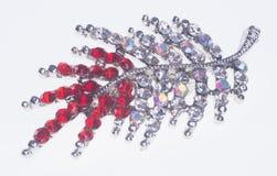 broomed фибула на предпосылке стоковое изображение