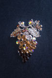 broomed фибула на предпосылке стоковая фотография rf