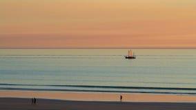 Broomelogger bij zonsondergang Stock Foto