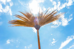 Broomstick on background sky Royalty Free Stock Image