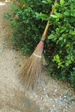Broomstick in shrub Stock Image