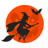 With on broomstick Stock Images