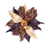 Brosche in der Form einer Blume des farbigen Leders Stockbild
