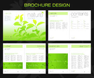 broschyrdesign Royaltyfria Bilder