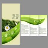 Broschyrdesignmall med naturbilden stock illustrationer