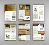 Broschyrmall med infographicsbeståndsdelen Arkivbilder