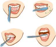 Brossage de dent Photos libres de droits