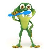 Brossage de dents de grenouille Images libres de droits