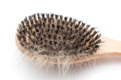 Brosse d'animal familier avec le bloc des cheveux de chien Images stock