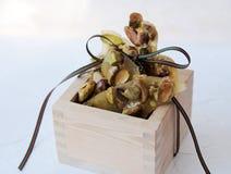 Brosse de noot van de pistache en lint Stock Foto