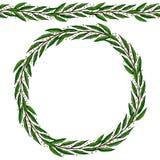 Brosse sans fin de ruban de feuille de Green Bay Laurel Round Wreath Frame avec un espace pour le texte Calibre de récolte de fer Photo stock