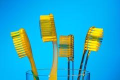 Brosses à dents pour se brosser les dents Photo libre de droits