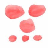 Brosses de rouge de couleur d'eau de vecteur Photographie stock